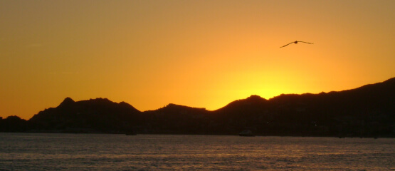 Loc-Cabos